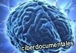 la ansiedad del cerebro